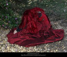 Rose Red13 by faestock