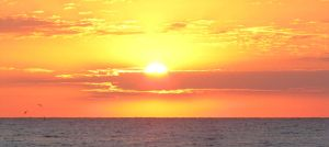 Padre Island Sunrise by Angelinleather