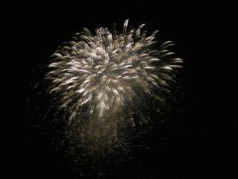 4th of July Fireworks 2013 11 by Collidoscope