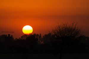 Day 195: Sunset in Lahore by umerr2000