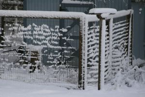 Snow Covered Fence Stock by Crematia18