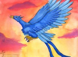 Blue Phoenix - Color by Jetyra-Luck