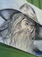 Gandalf by Nicollettey