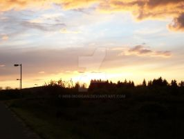Sunset on the Bike Path by mrs-morgan