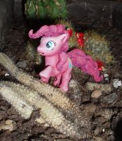 Pinkie Pie and cactuses by DaOldHorse