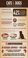 Cat and Dog Infographic by AaronFD