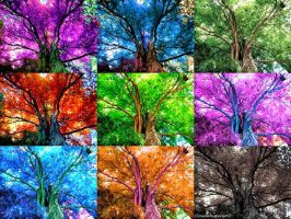 Colorful Foliage Whispers --- Photomontage 2 (x9) by Cloudwhisperer67