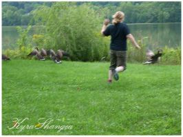 CHASE GEESE by KyraShangea
