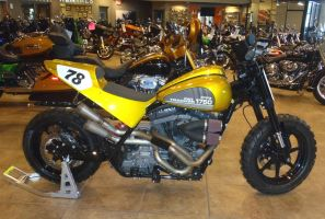 Big Bore FR 1750cc Fat Tracker Harley-Davidson by Caveman1a