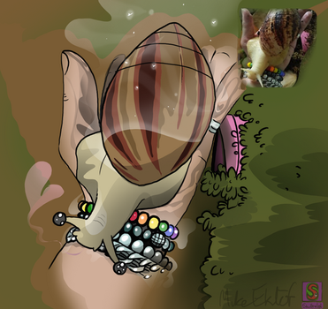 Snail Commission3 by MrCanisSkulltail