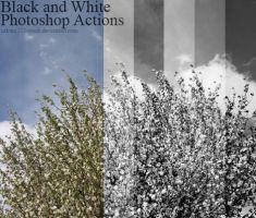 Black and White Actions by Sakura222-stock