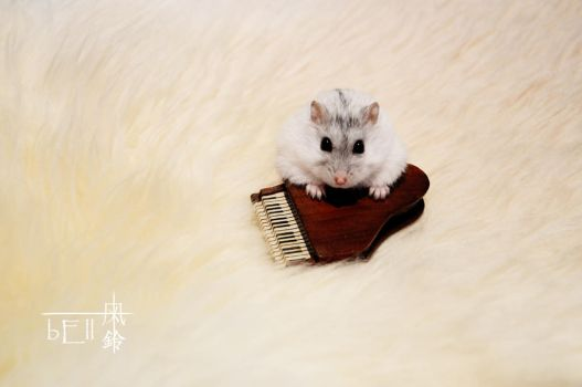 Hamster and the Piano by windbelle