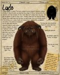 Labyrinth Guide - Ludo by Chaotica-I