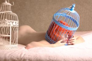 Loss, Caged Series by Seraphina-Song