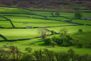 Colours Of Swaledale by StephenJohnSmith