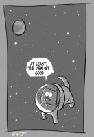 the adventures of spacecat by ome