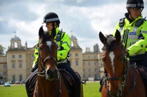 Police Horses by Streamwhisker