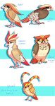Pidgeots by WindFlite