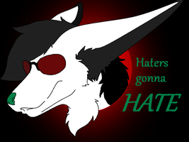 Haters gonna HATE by Shi-Kage