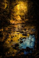 A stream in the Golden Forest by ryder68