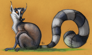 Kiki, the lemur by CarolineRaquel
