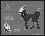 .: Anubis Reference Sheet :. by The-F0X