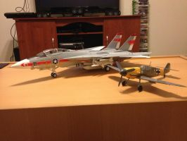 F-14A and BF-109F by Mace66VW