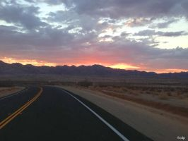 Morning in the CA Desert by surlana
