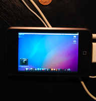 iPod Touch Leopard by datboyct