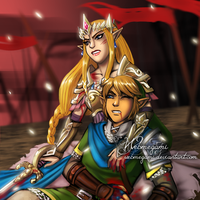 Hyrule Warriors - Backup by Webmegami