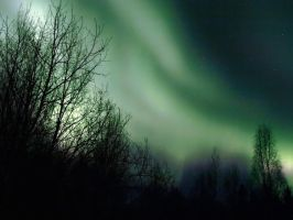 Aurora March 9-10th, 2011 by Line-of-Birds