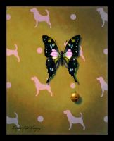 Dog And Butterfly by LindaRHerzog