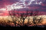 Colorful Sunset by fti7