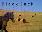 BlackJack by lildonkey