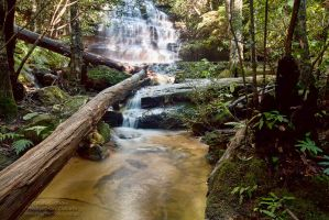 Junction Falls by FireflyPhotosAust