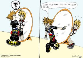 Sora's mirror image by land3