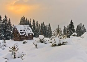 Winter Story. by lica20