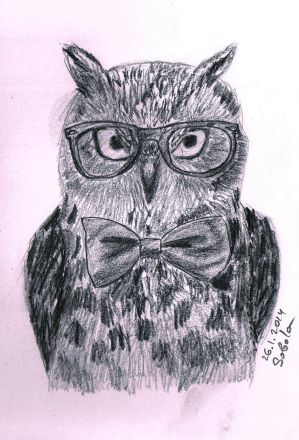 The Smart Owl by Sobola