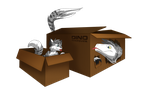 Dino Takeover, Cats Love Boxes XD by albinoraven666fanart