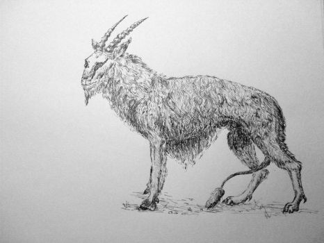 Goat o_O by RostaNorsk