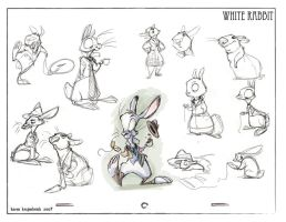 The White Rabbit by kayjkay