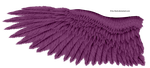 Violet Eagle Wing by K1ku-Stock
