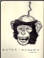 Astro Monkey by Sebastian-Chow