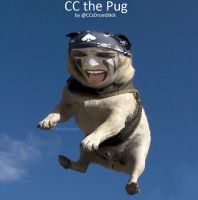 CC the Pug by TheBlackBullet