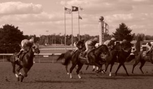 Finish Line, Turfway Park by bugsythepigeon