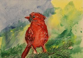 Watercolor and Ink #6 -  Cardinal Bird by Oksana007