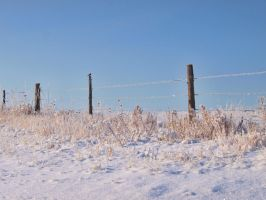 snowy fence 3 by fotophi