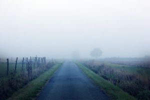 Fog by By-who-photography