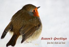 Season's Greetings and A Happy New Year 2012 by Yoonett