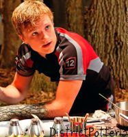 Peeta Mellark In The Training Centre by DistrictPotter13